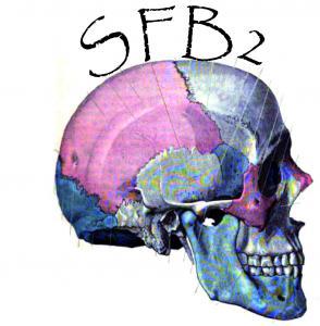 Europe - France - Summer workshops in bioarchaeology and paleopathology - 2013