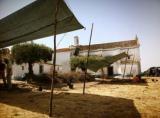 Europe - Portugal - Santa Susana Archaeological Project - 2016