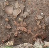 Europe - Romania - Pauleni Ciuc Neolithic Settlement Excavation - 2011